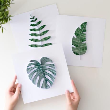 Kolekcja – Papierowa Dżungla